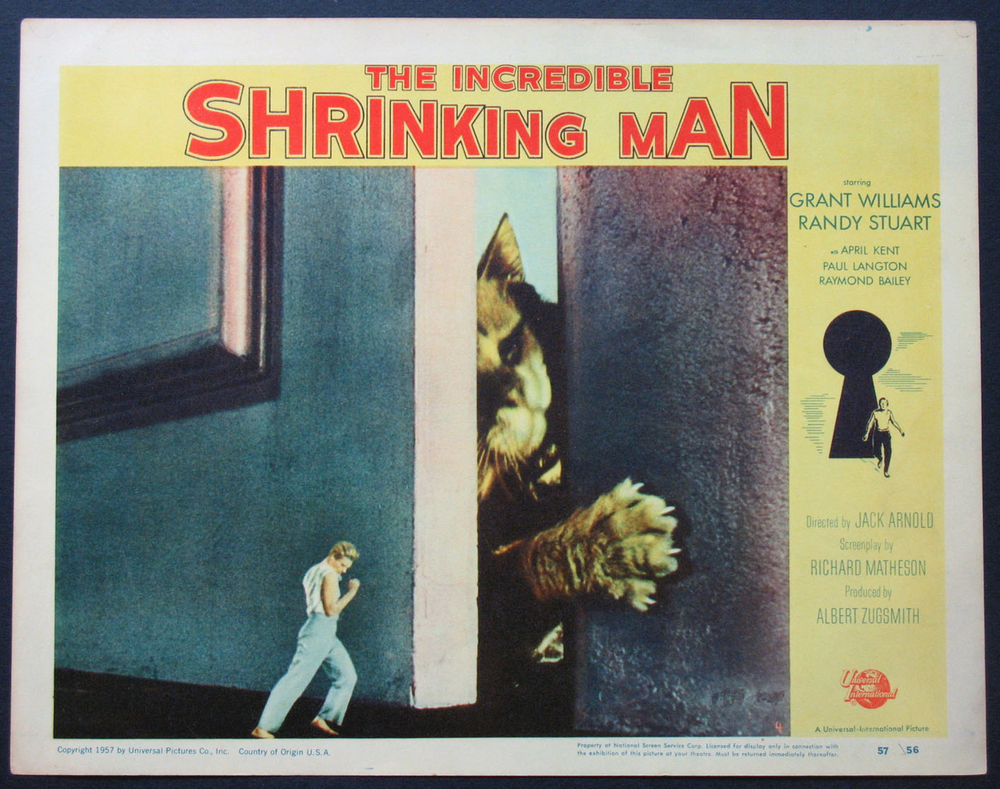 INCREDIBLE SHRINKING MAN, THE @ FilmPosters.com